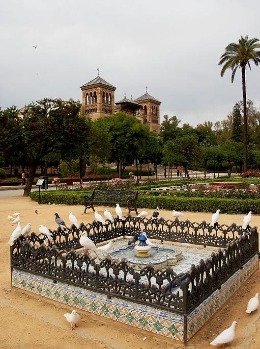 plaza de palomas