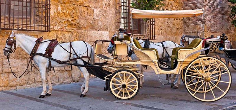 andalusische Pferdekutsche
